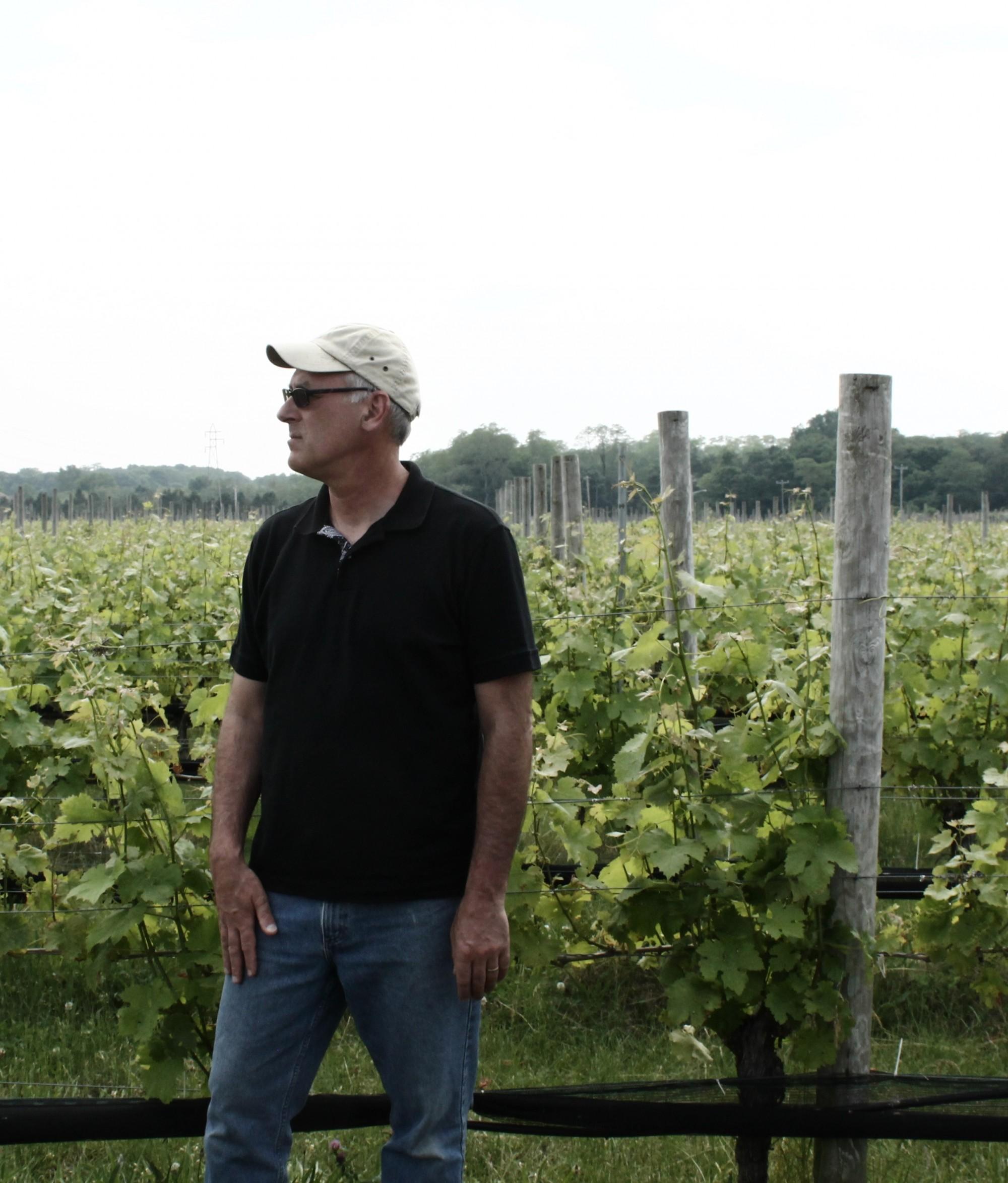 David Page in the Shinn Estate Vineyard