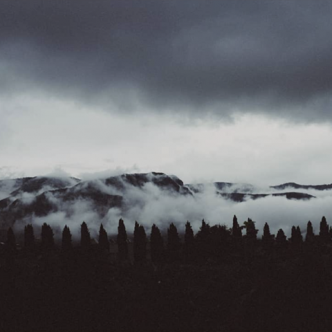 This spectacular shot of the Foradori landscape brought to you by fog!