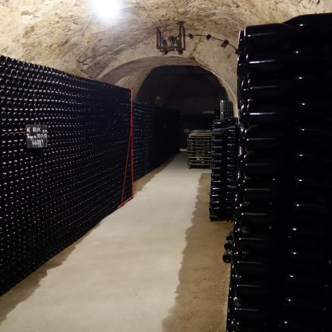 Cellar at Paillard in Champagne